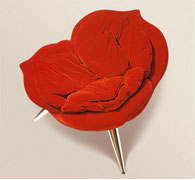 Rose from Edra